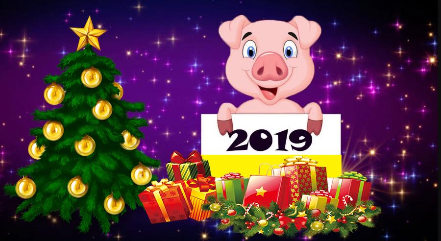 Intram in 2019, Anul Porcului: Aceste daruri nu trebuie oferite celor dragi, de Anul Nou
