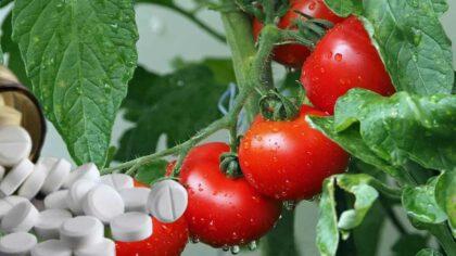 Aspirina pentru legume si flori....